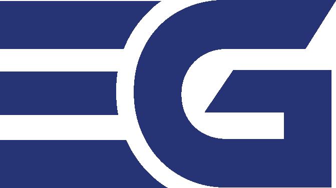 ENVSN Group